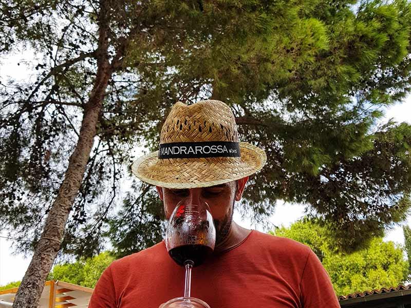 wine tasting menfi mandrarossa