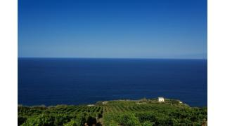 Between sea and fire: Vulcano's wines