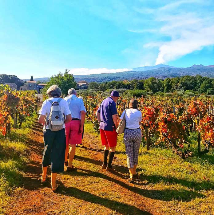 Wine tourism in Sicily? Food and Wine Tourism is growing