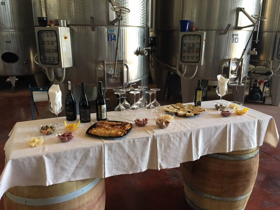 Rich tasting of Sicilian wine and food - Avide Vineyards & Wineries 1