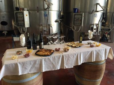 Rich tasting of Sicilian wine and food - Avide Vineyards & Wineries