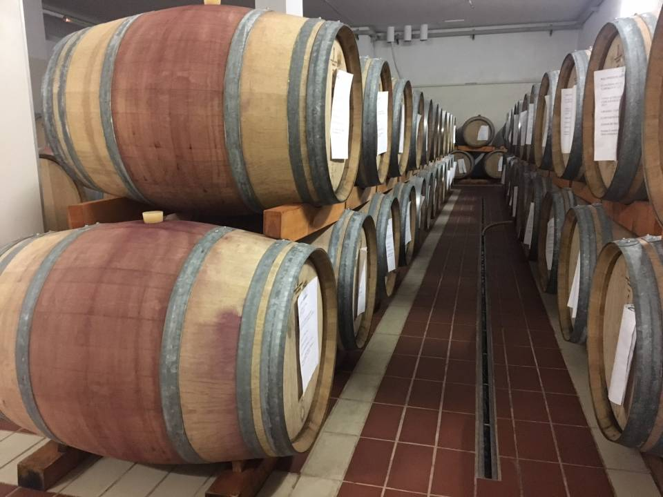 Rich tasting of Sicilian wine and food - Avide Vineyards & Wineries 2