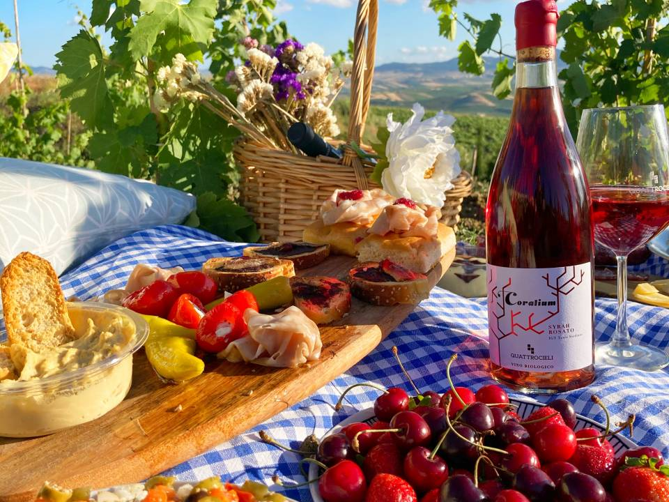 Picnic in Winery Tasting - Quattrocieli - Quattrocieli Winery 2
