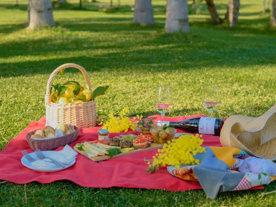 PICNIC ON THE LAWN AMONG WINES, TYPICAL PRODUCTS AND NATURE Tasting - Augustali Farm - AUGUSTALI Farm 1