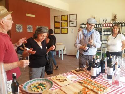 Tour in cellar & tasting - Wineries Quignones