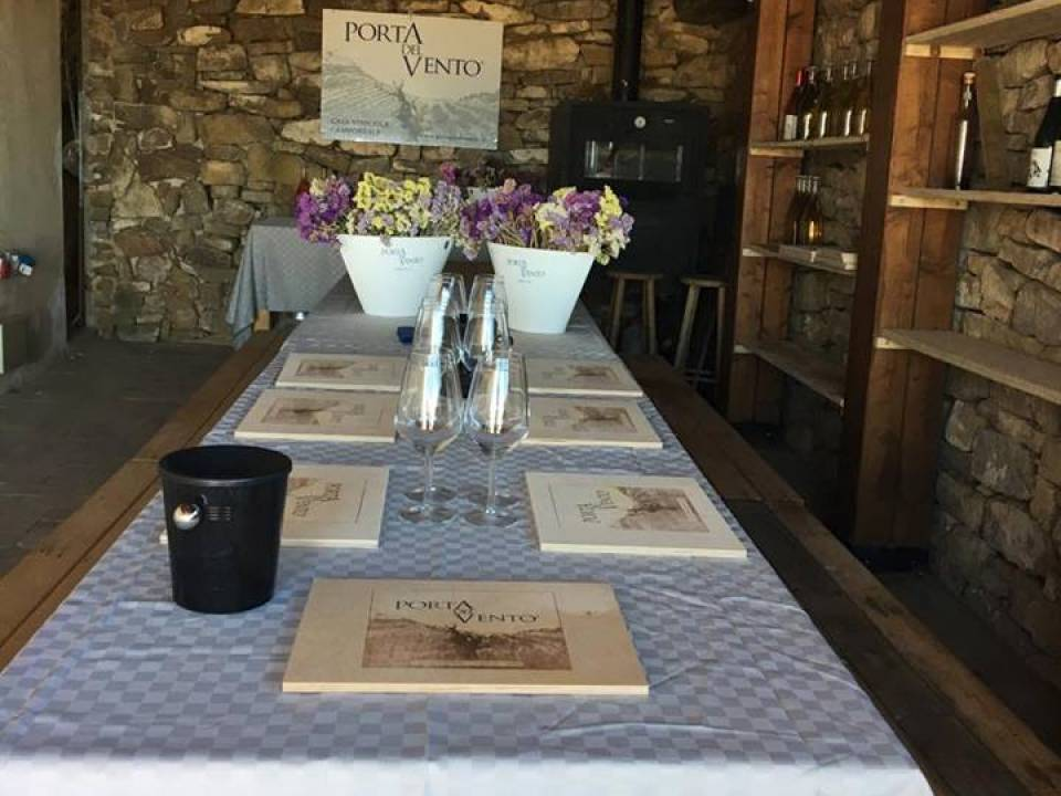 Wineyard tour and Tasting + Lunch - Porta del Vento