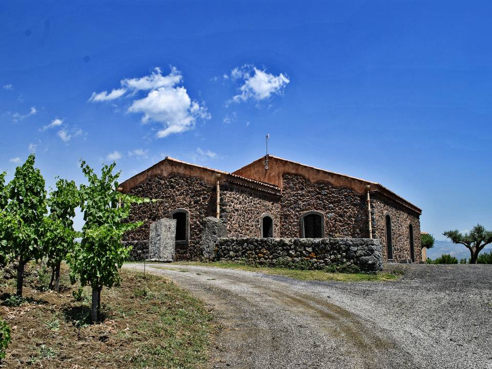 winery Torre Mora2